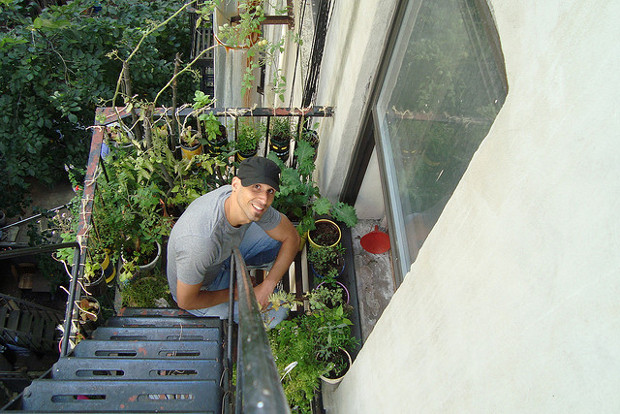 Container Gardening For Urban Apartment Dwellers | Food Renegade