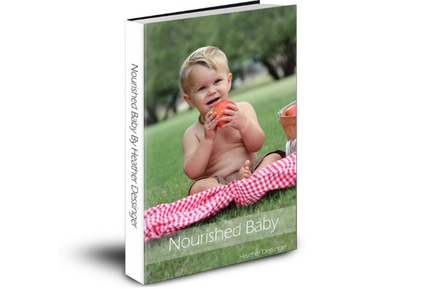 Nourished Baby E-book