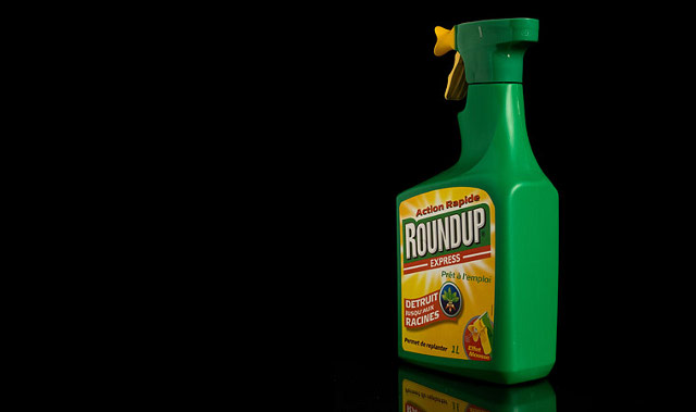roundup glyphosate kills gut bacteria causes disease
