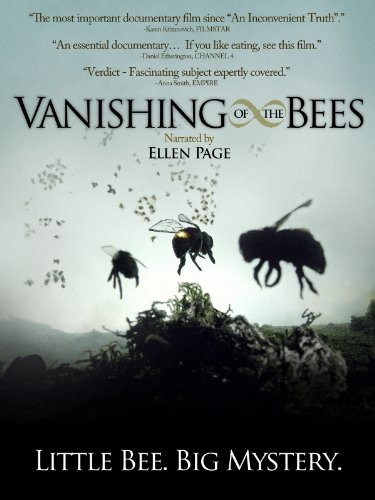 vanishing-bees