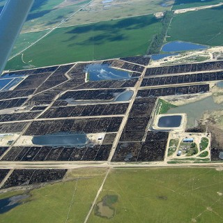 aerial feedlot photo ag gag