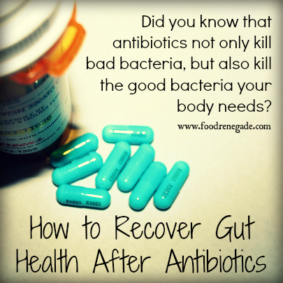 recover-gut-health-after-antibiotics