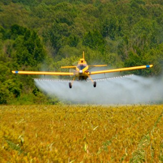 gmo-agent-orange-resistant-corn-soy