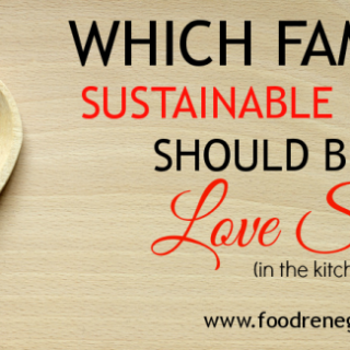 Which Famous Sustainable Foodie Should Be Your Love Slave? (In the kitchen!!)