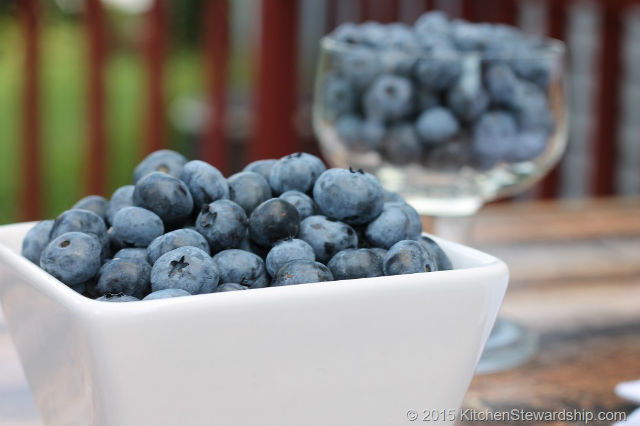 Blueberries Are Antioxidants