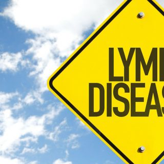 chronic-lyme-should-you-really-worry-1