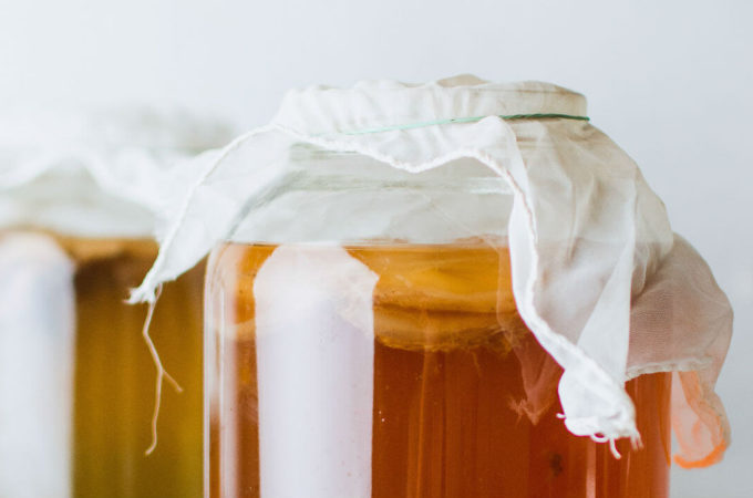 kombucha questions answers
