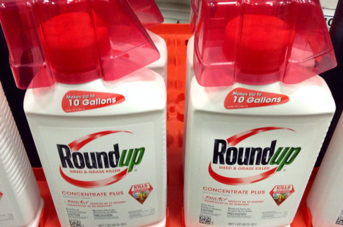 monsanto lawsuits roundup causes cancer glyphosate
