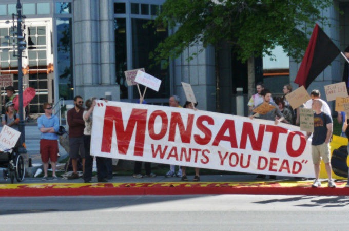 monsanto lawsuits roundup cancer glyphosate
