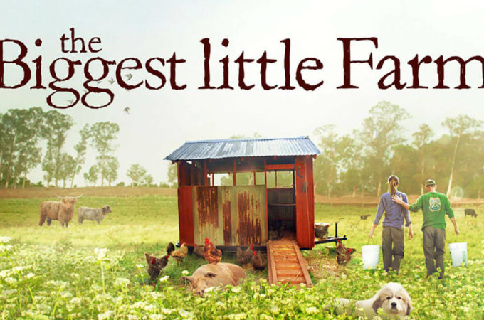 biggest little farm review